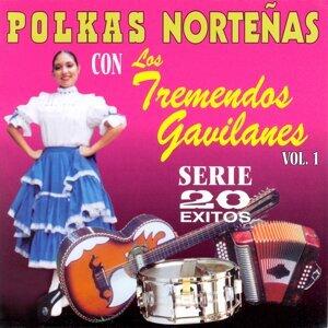 Polkas Norteñas, Vol. 1:  20 Éxitos