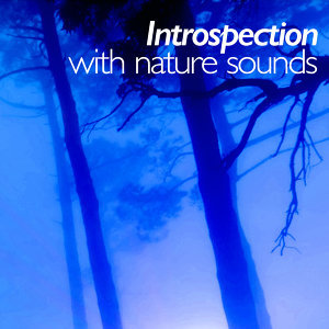 Introspection with Nature Sounds