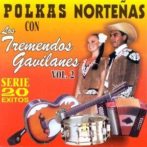 Polkas Norteñas: 20 Éxitos, Vol. 2