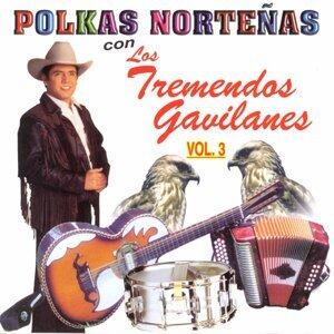 Polkas Norteñas, Vol. 3: 20 Éxitos