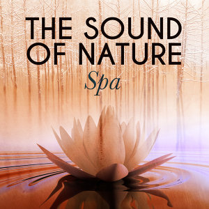 The Sound of Nature: Spa