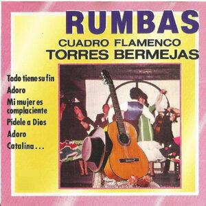 Rumbas, Cuadro Flamenco Torres Bermejas