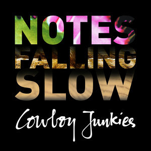 Notes Falling Slow