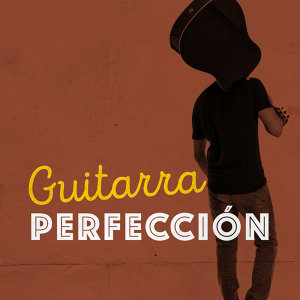 Guitarra Perfección