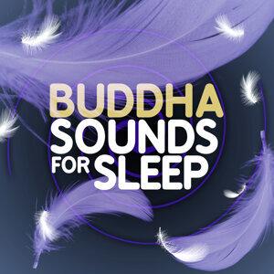 Buddha Sounds for Sleep