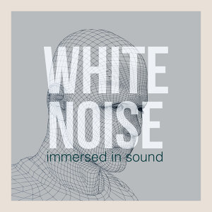 White Noise: Immersed in Sound