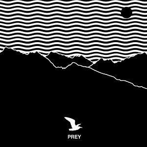 Prey (Album Version) - Album Version