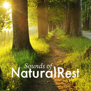 Sounds of Natural Rest