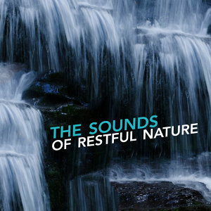 The Sounds of Restful Nature