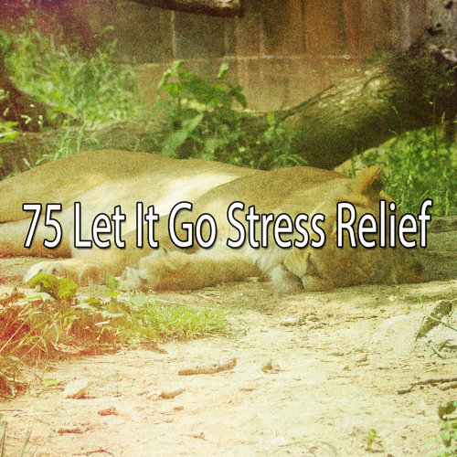 75 Let It Go Stress Relief