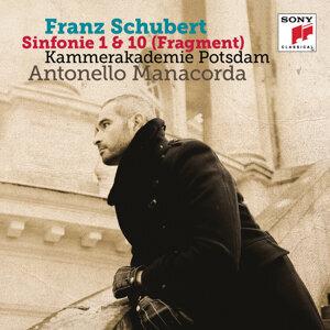 Schubert: Symphonies Nos. 1 & 10 (Fragment)