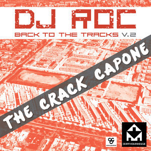 Back To The Tracks Vol 1