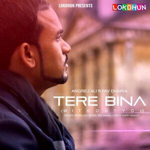 Tere Bina (feat. Pav Dharia) - Single