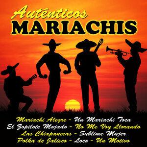 Auténticos Mariachis