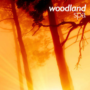 Woodland Spa