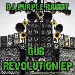 Dub Revolution