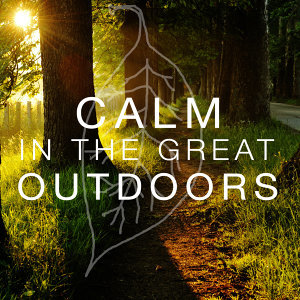 Calm in the Great Outdoors