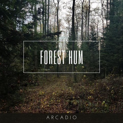 Forest Hum
