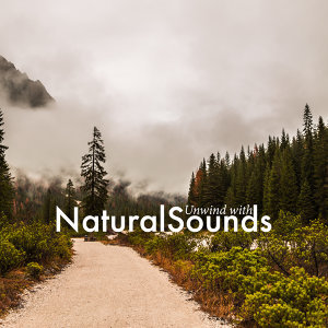Unwind with Natural Sounds