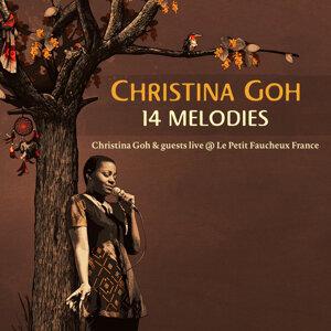 14 Melodies (Live at Le Petit Faucheux France)