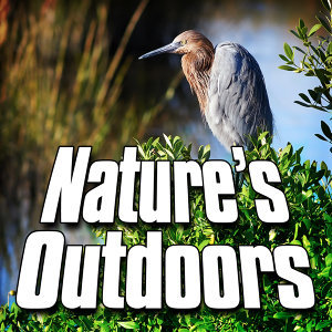 Nature's Outdoors (Nature Sound)