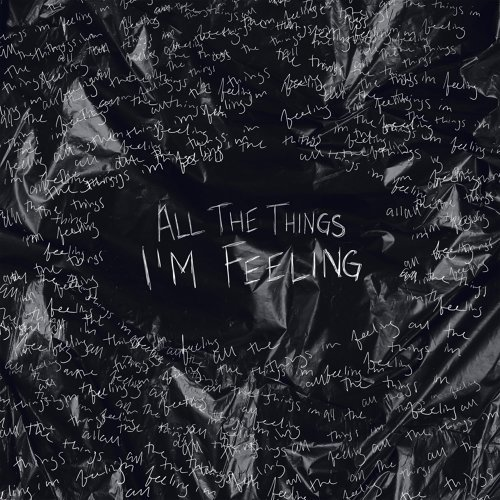 All The Things I'm Feeling