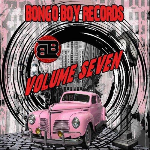 Bongo Boy Records Compilations Volume Seven