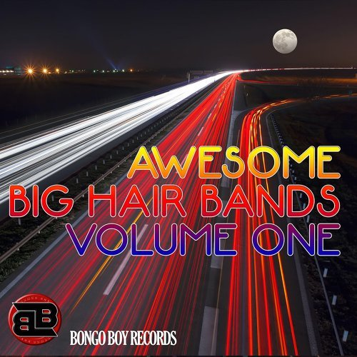 Bongo Boy Records Awesome Big Hair Bands Volume One