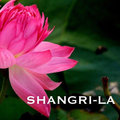 Indian Summer - Shangri-La - Traditional Indian Meditation Music