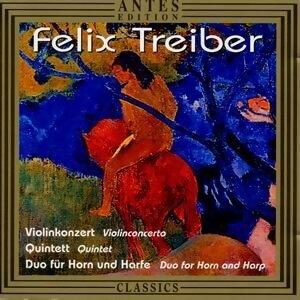 Felix Treiber