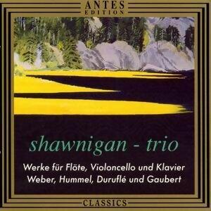Werke fur Floete, Violoncello und Klavier