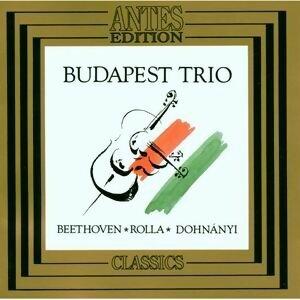 Ludwig van Beethoven, Allessandro Rolla, Ernst von Dohnányi