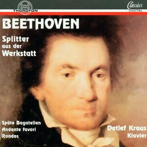 Ludwig van Beethoven: Splitter aus der Werkstatt
