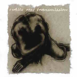 White Rose Transmission