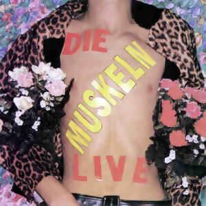 Die Muskeln Live