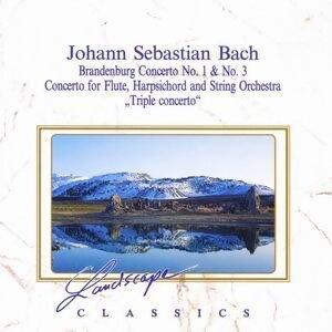 Johann Sebastian Bach: Brandenburgisches Konzert Nr. 1 & Nr. 3 - Konzert fur Flote, Cembalo & Streichorchester, BWV 1044