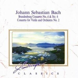 Johann Sebastian Bach: Brandenburgisches Konzert Nr. 4 & Nr. 6 - Konzert fur Violine & Orchester Nr. 2