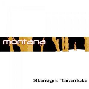 Starsign: Tarantula