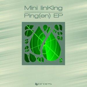 Ping(en)
