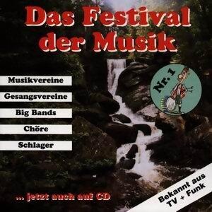 Festival der Musik