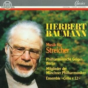 Herbert Baumann: Musik fur Streicher