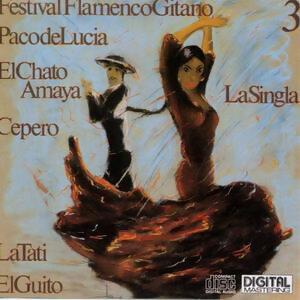 Festival Flamenco Gitano 3