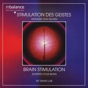 Stimulation des Geistes