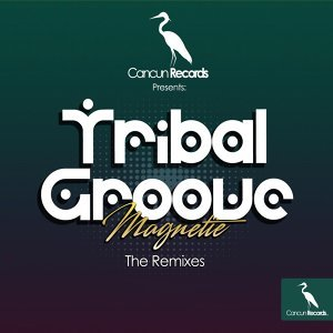 Tribal Groove - The Remixes