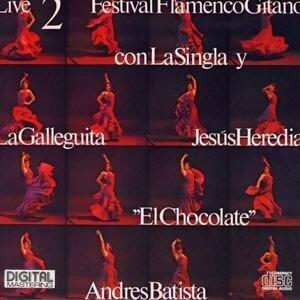 Festival Flamenco Gitano 2 Live