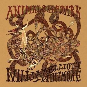 Animals In The Dark