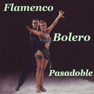 Bolero Flameco Pasadoble