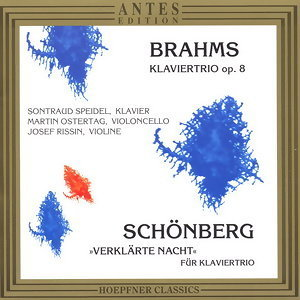 Johannes Brahms, Arnold Schoenberg