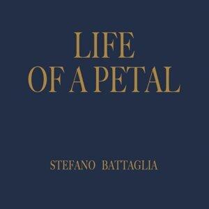 Life of Petal