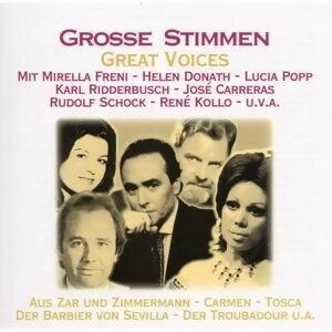 Grosse Stimmen